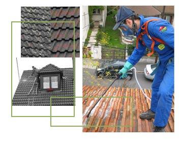 entreprise r novation toiture demoussage toiture phb d sinsectisation d moussage toiture. Black Bedroom Furniture Sets. Home Design Ideas