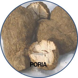 poria