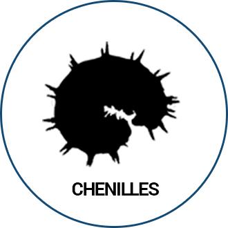 Chenilles