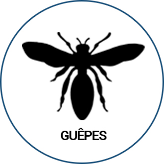 Guepes