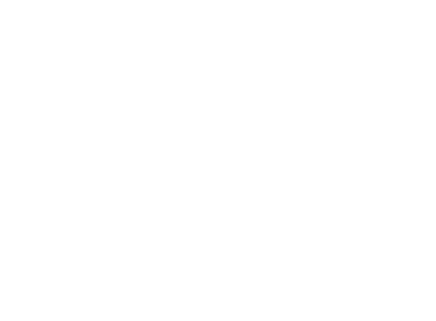 intervention contre les abeilles